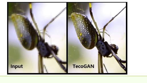 tecogan软件
